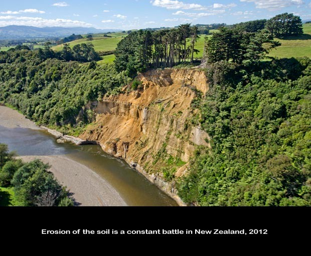 NZ035-Cliff-Erosion_NZ-0983